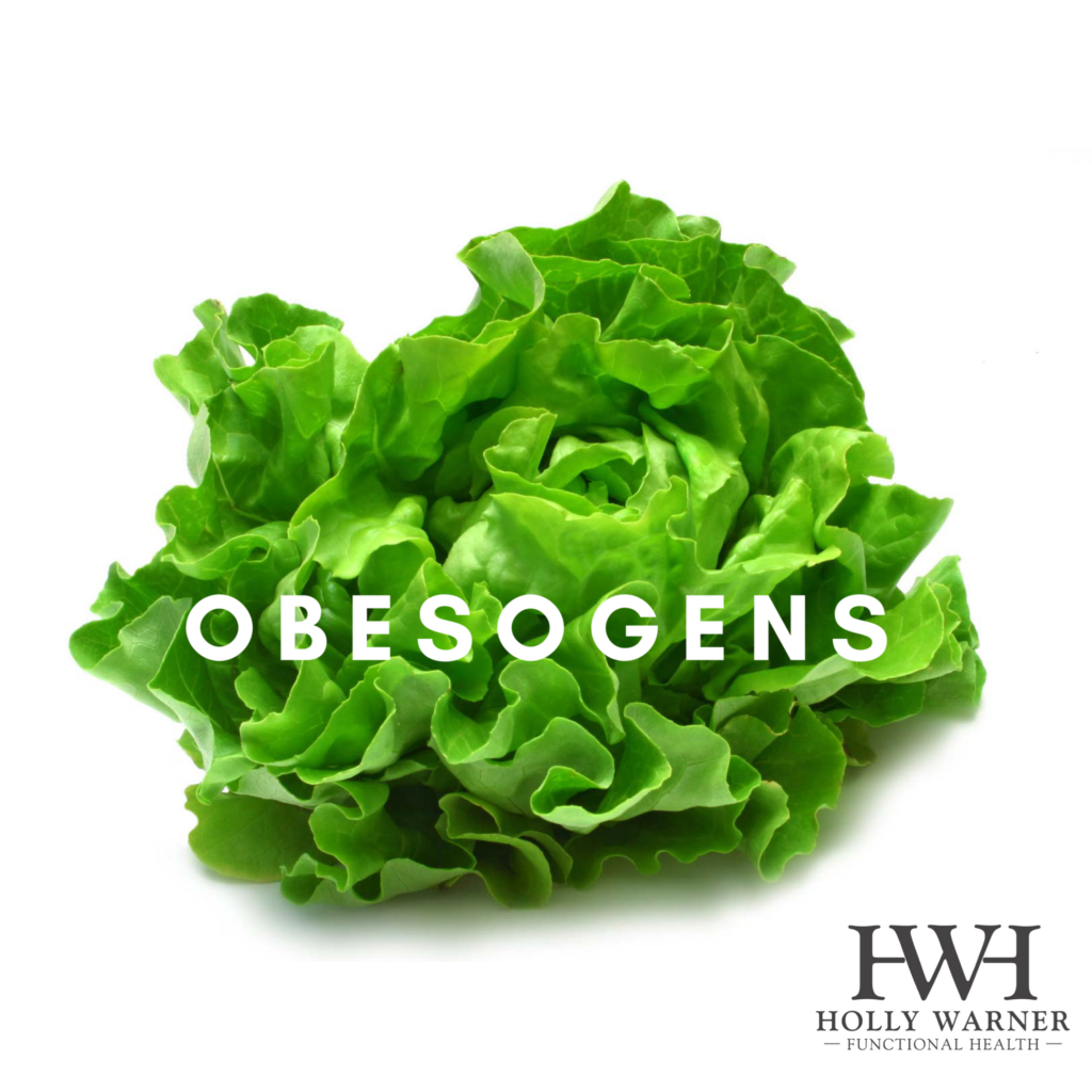 Obesogens, toxic chemicals that make us obese or contribute to weight gain.